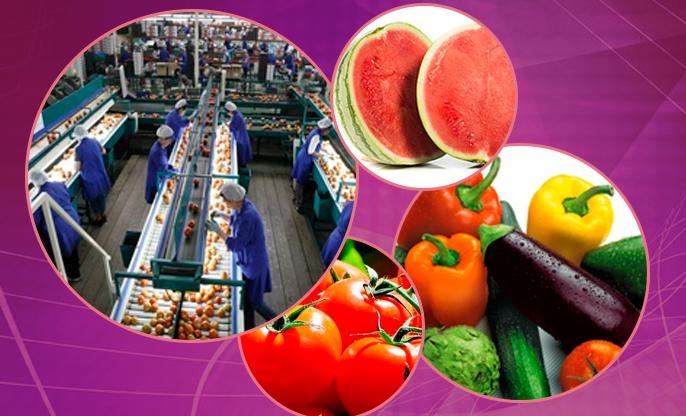 Nuevas tecnologías para empresas hortofrutícolas